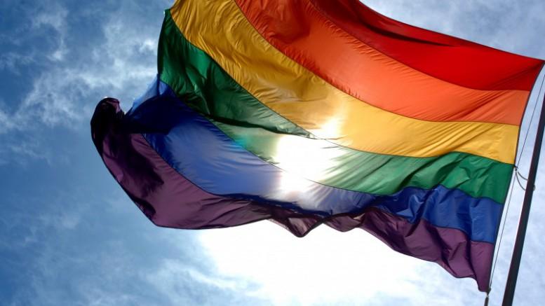 2016 Visibilidad Bisexual